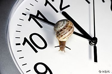 Zeit für Entschleunigung